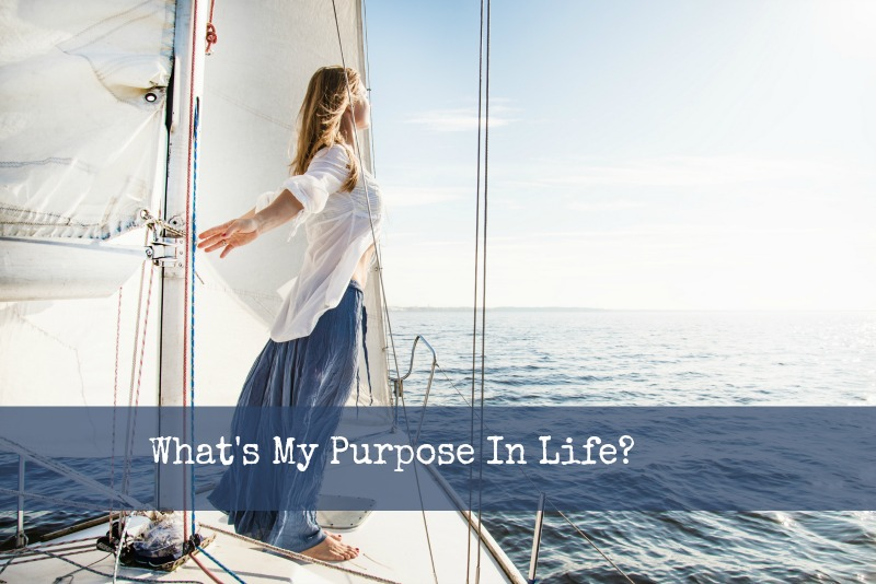 What's My Purpose in Life?